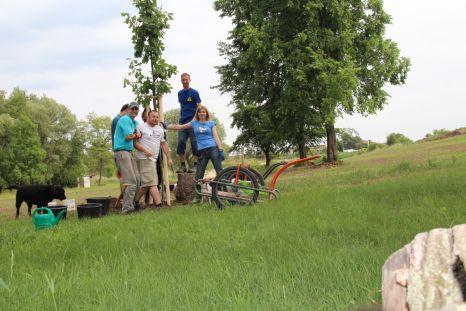 Výsadba stromů 2. 6. 2014