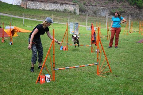 Víkendovka agility a skokové gymnastiky