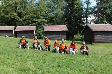 Svojanov - psí tábor